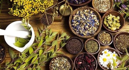 MEDICINAL PLANTS PLATFORM FOR HEALTH & SUSTAINABILITY